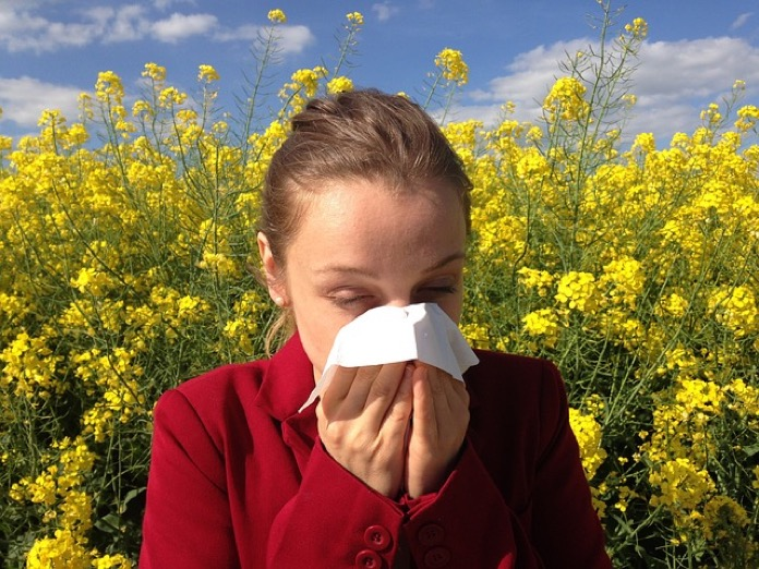 Cause of Seasonal Allergies
